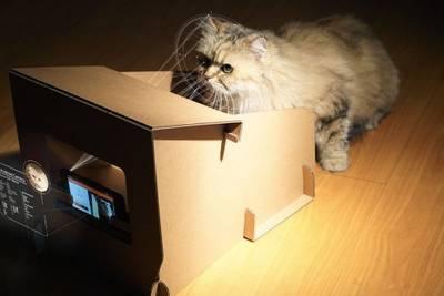 CatFi Box - Google Cardboard для котиков.