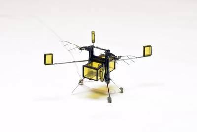 Теперь пчелы-роботы могут нырять и выходить из воды с помощью крошечных горючих ракет