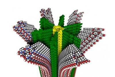 Новый полимер позволит создавать самовосстанавливающиеся искусственные мышцы