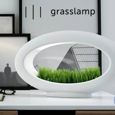 Grasslamp - ультрамодный светильник с клумбой, который выиграл премию Design and Design.