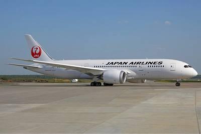 Пилота отстранили от работы за селфи со стюардессой во время полёта