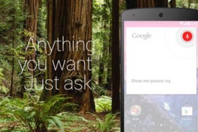 Поиск по «OK Google» стал работать внутри приложений