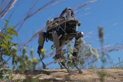 Робот Spot успешно прошёл курс подготовки морских пехотинцев