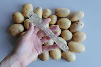 Разработан биоразлагаемый «пластик» из… картофеля