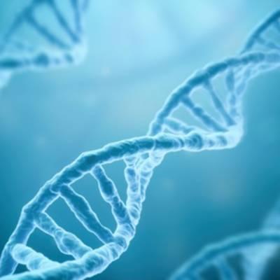 Наука делает шаг к кодированию вирусосохраняющих клеток человека
